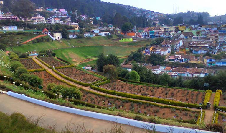 Ooty Packages